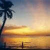 蘇梅島椰林沙白的絕美天堂