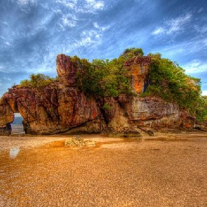 古晉巴哥國家公園一日遊