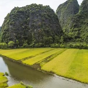 (特價)越南寧平華閭+三谷碧洞豪華一日遊