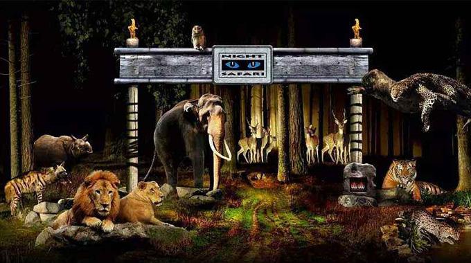 新加坡Night Safari夜間野生動物園+園區遊覽車門票(不分場次)