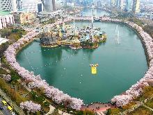 [特價]首爾樂天世界/樂天世界塔+南怡島一日遊