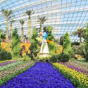 新加坡濱海灣花園雙館+空中走廊親子套票