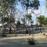 沙巴海河灣+香格裏拉拉薩麗雅自助晚餐一日遊
