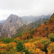 首爾-江原道五台山/雪嶽山包車一日遊(10小時)