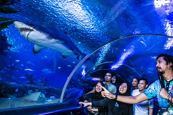 吉隆坡水族館開放時間介紹