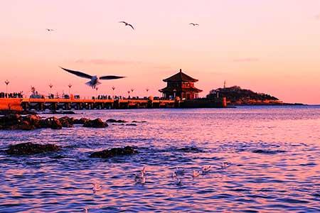 【青島 嶗山 八大關 天主教堂2日遊】 深度體驗歐範兒規劃的城市